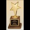 Metal goldtone modern star casting trophy