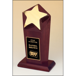 Polished metal goldtone star casting trophy