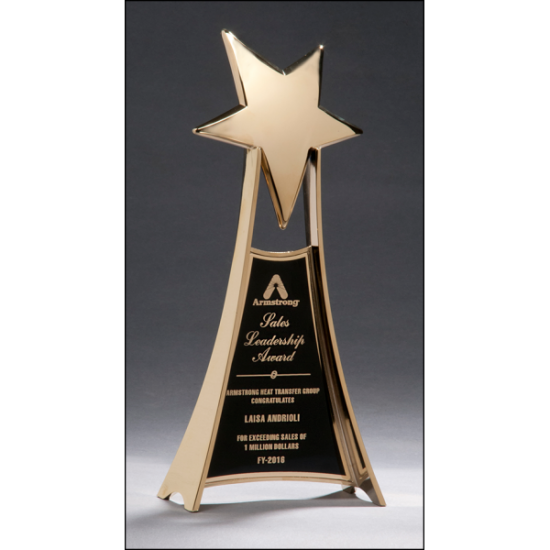 Metal star trophy