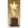 Star casting in goldtone Trophy