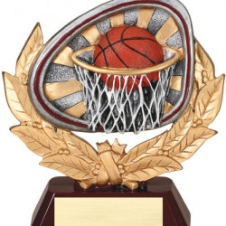 """Color 5.5"""" Resin Stamford Series Basketball Trophy"""