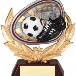 "Color 5.5"" Resin Stamford Series Soccer Trophy"