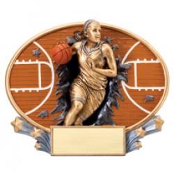 Xplosion Ovals Basketball Award