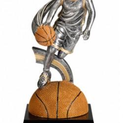 Motion Xtreme Basketball Award