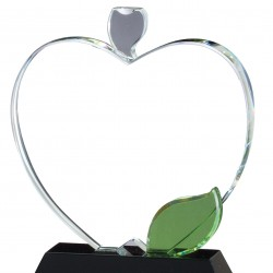 Apple Optical Crystal Award
