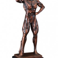Resin Sculpture Female Body Builder Trophy