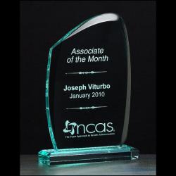 "Tidal Series 3/4"" thick polished acrylic award on acrylic base"