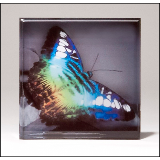 Sublimatable Acrylic Paperweight