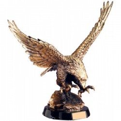 Eagle Award (AE1000)