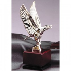 Eagle Award (AE460)