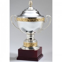Silver Metal Cup Trophy