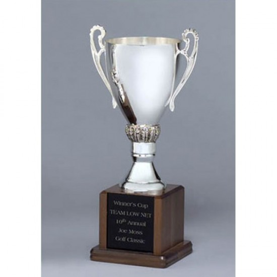 Silver-plated trophy Cup
