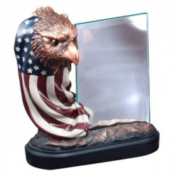 Eagle Award (RFB164)