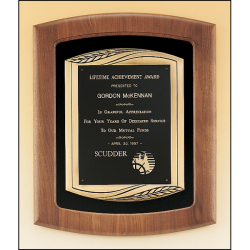 Solid American walnut Airflyte frame with furniture finish and an antique bronze finish frame casting on choice of velour backgrounds.