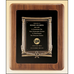 Solid American walnut plaque with an antique bronze casting on choice of velour backgrounds.