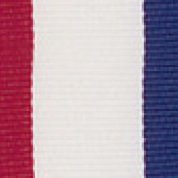Tri Color Series Medal