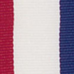 XR Series Medal